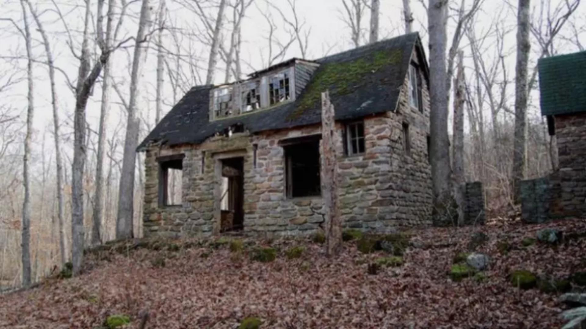 Casa parasita