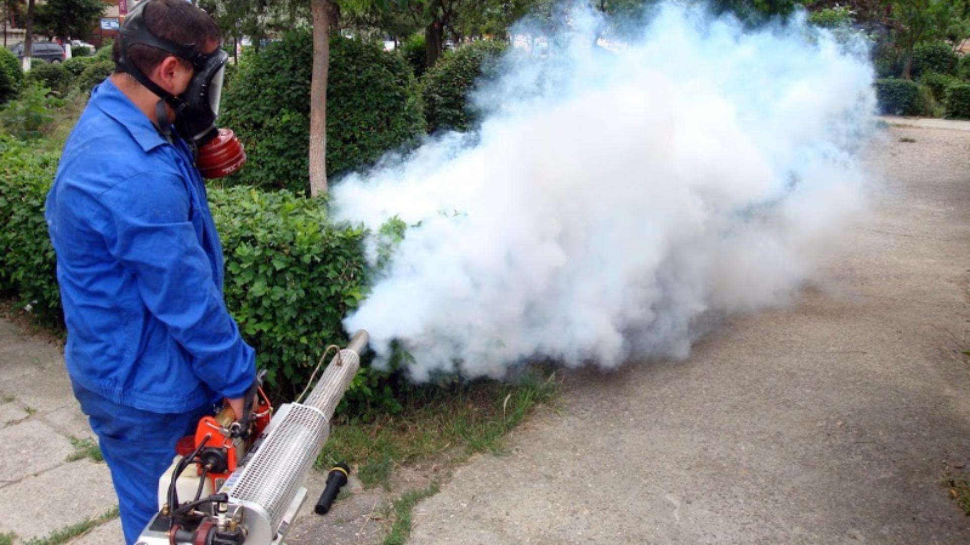 Primăria București a ajuns la cea de-a 13-a campanie de combatere a țânțarilor. Foto/Arhivă
