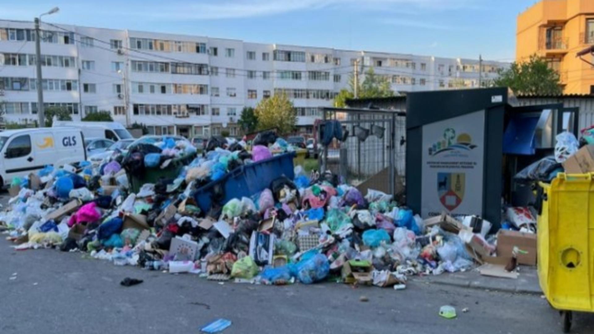 Un primar din România cere urgent stare de ALERTĂ locală din cauza gunoaielor și a focarelor de infecție