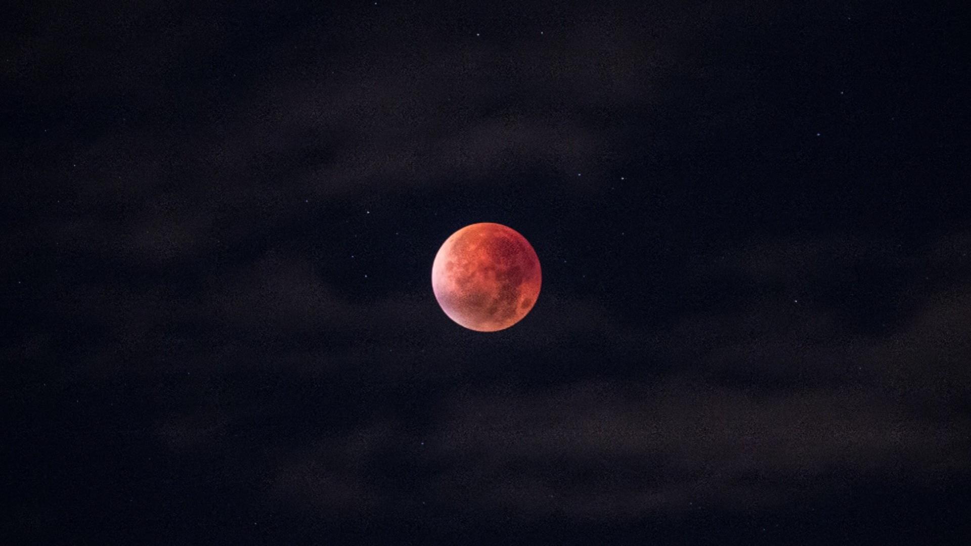 Luna rosiatica - sursa foto: pixabay