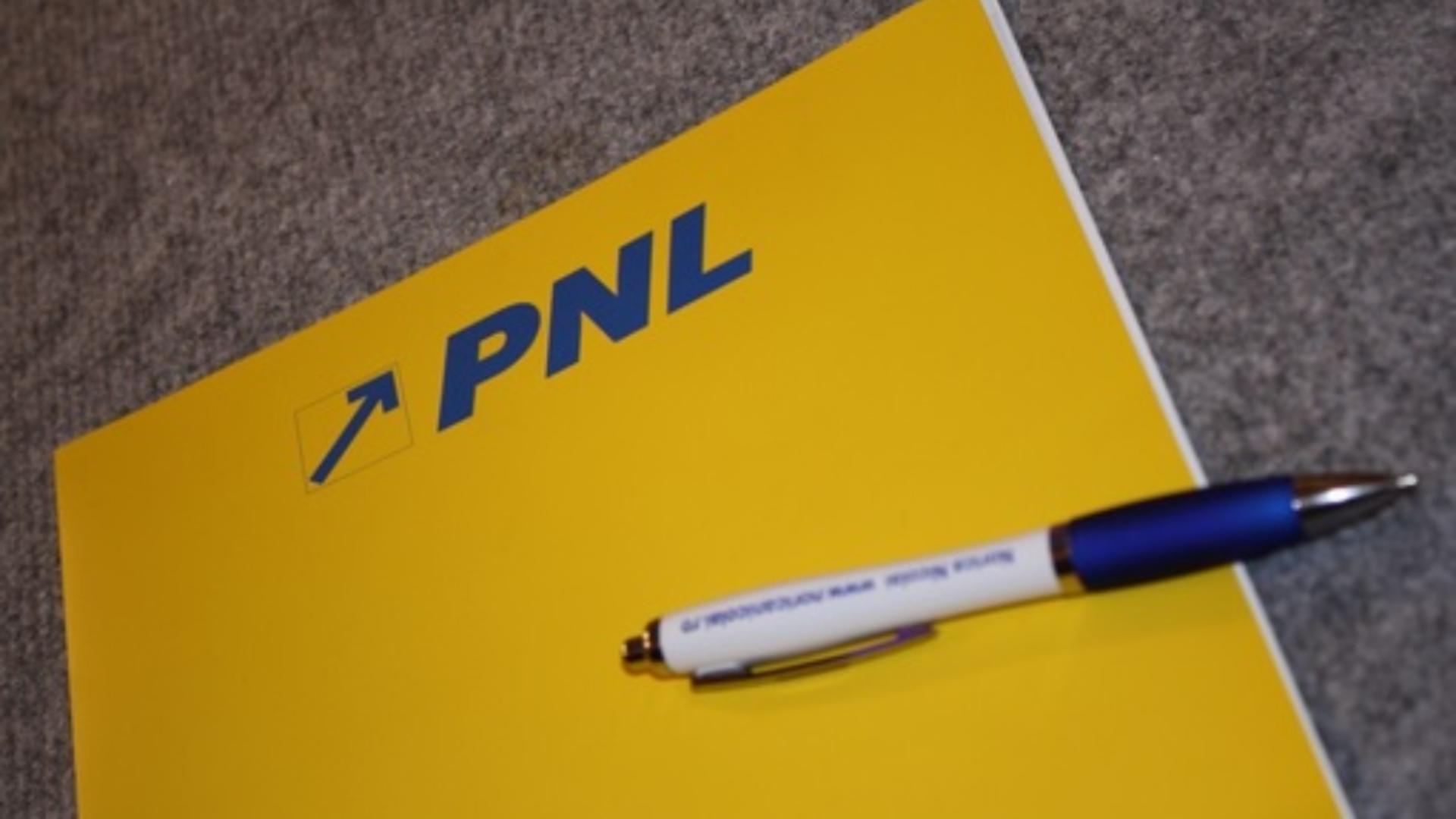 Dosar cu sigla PNL (arhiva)