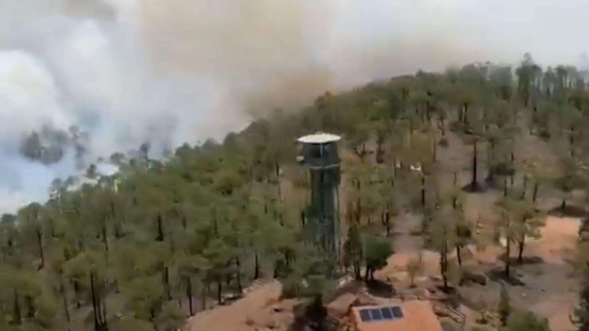 Tenerife, insula preferată a românilor, cuprinsă de un incendiu devastator.Foto/Captură video