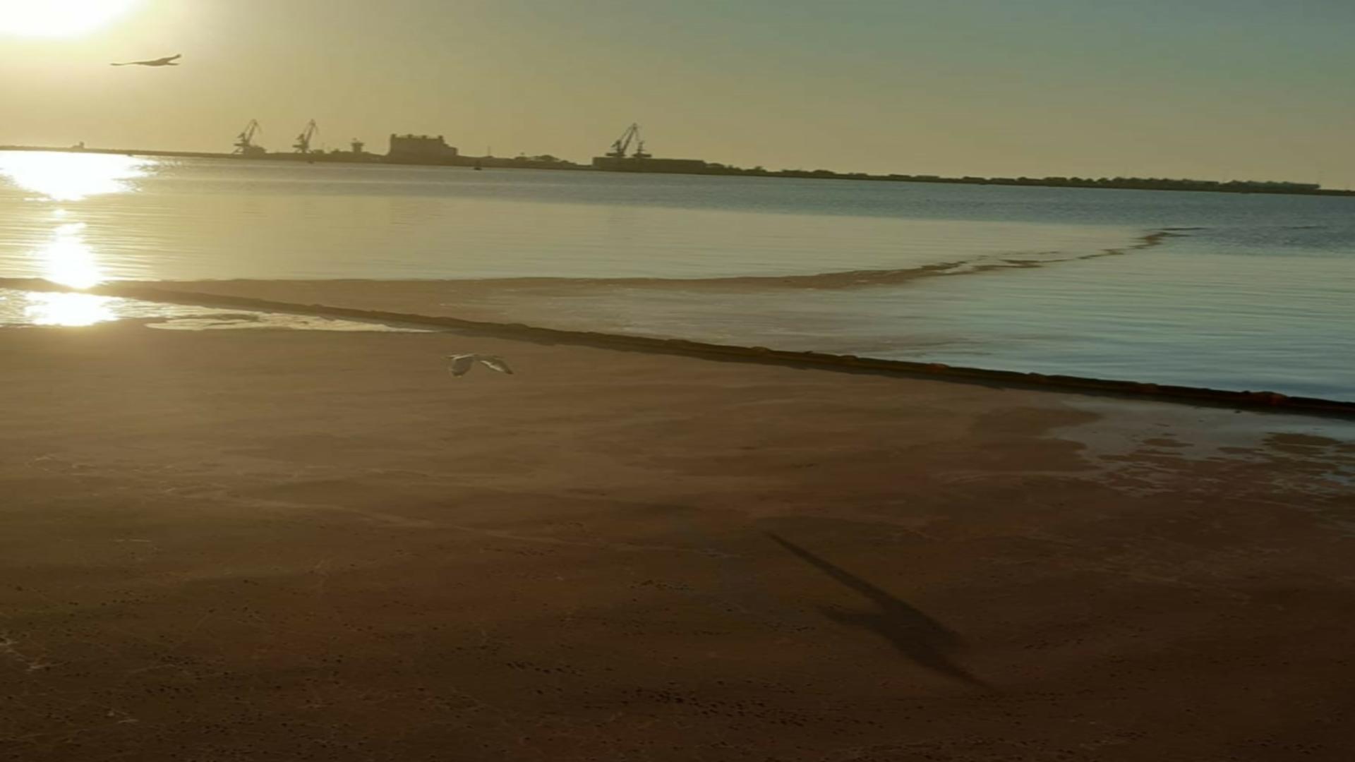 Poluare Șantier Naval Damen Mangalia