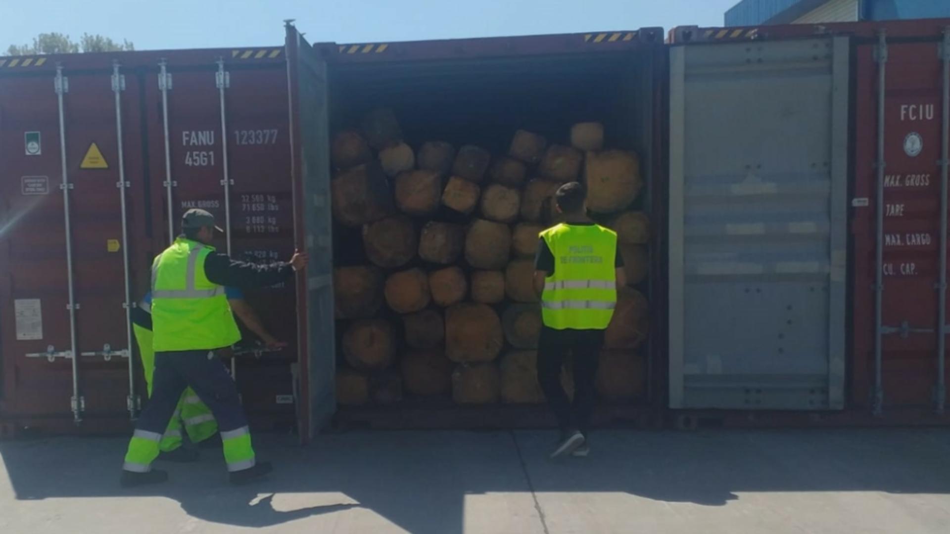 Containere bușteni Port Constanța
