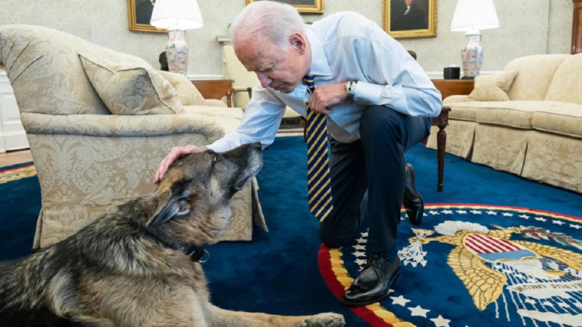 Joe Biden și câinele Champ