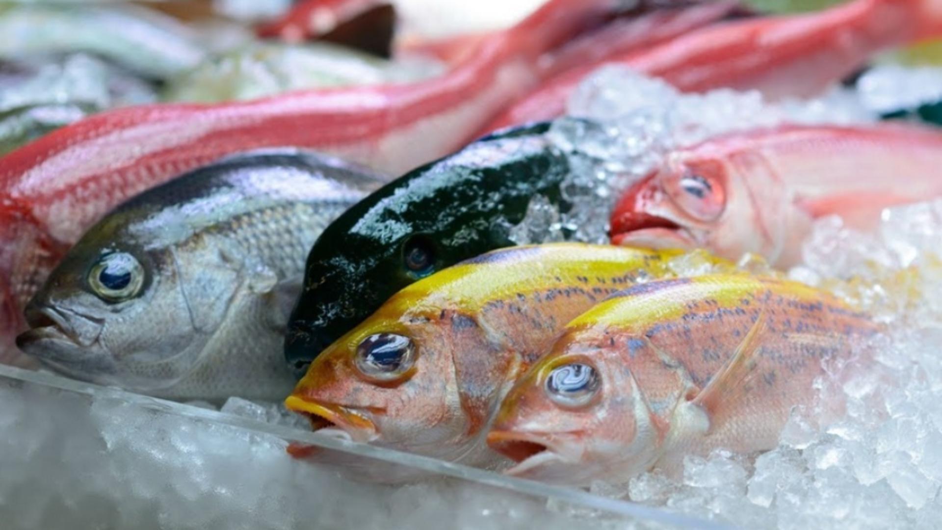 Autoritățile au găsit cantități mari de pește dăunător pentru consumul uman chiar în hypermarket-uri
