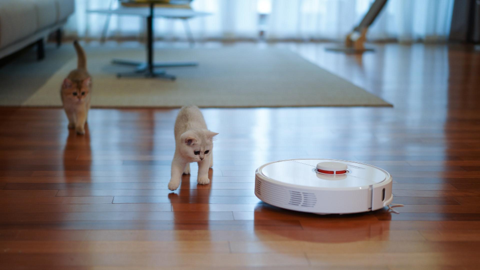 Merită să cumperi un aspirator robot? Iată tot ce trebuie să știi