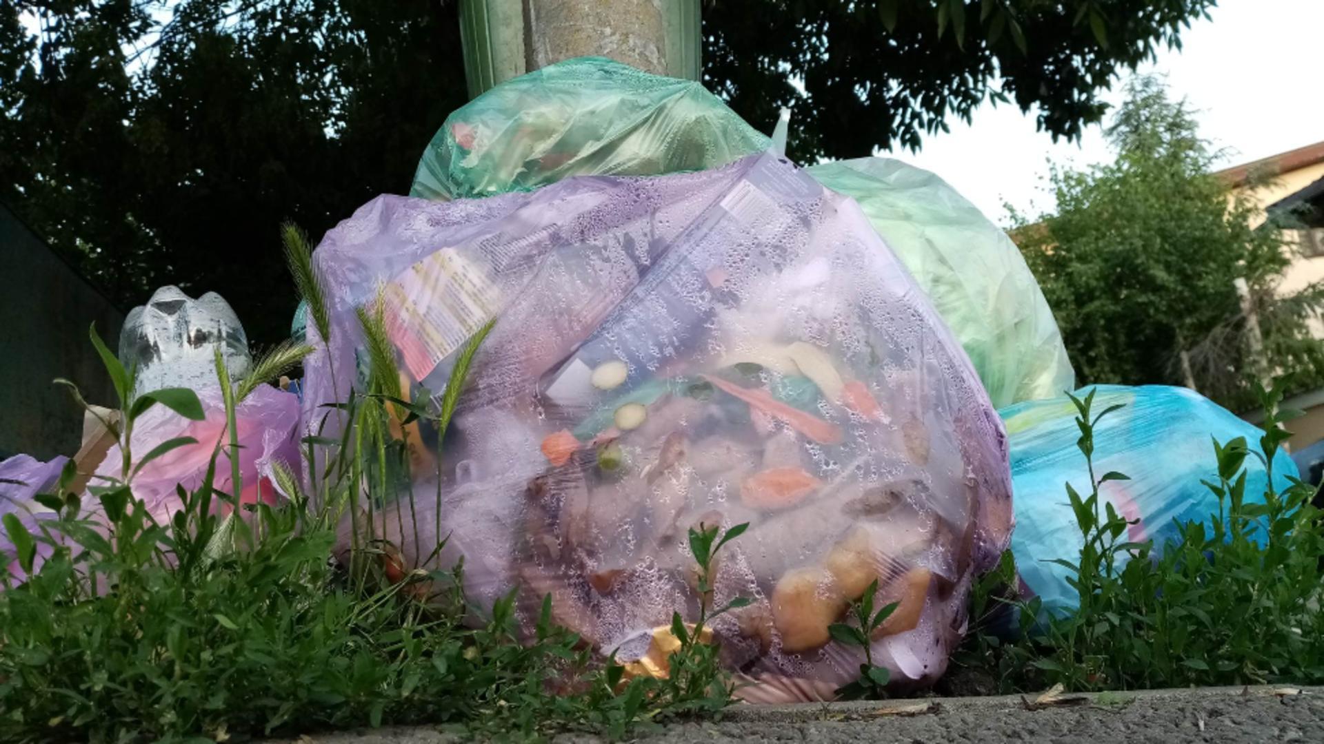 Saci de gunoi pe străzile din Sectorul 1 (foto: Emanuel Focsan)
