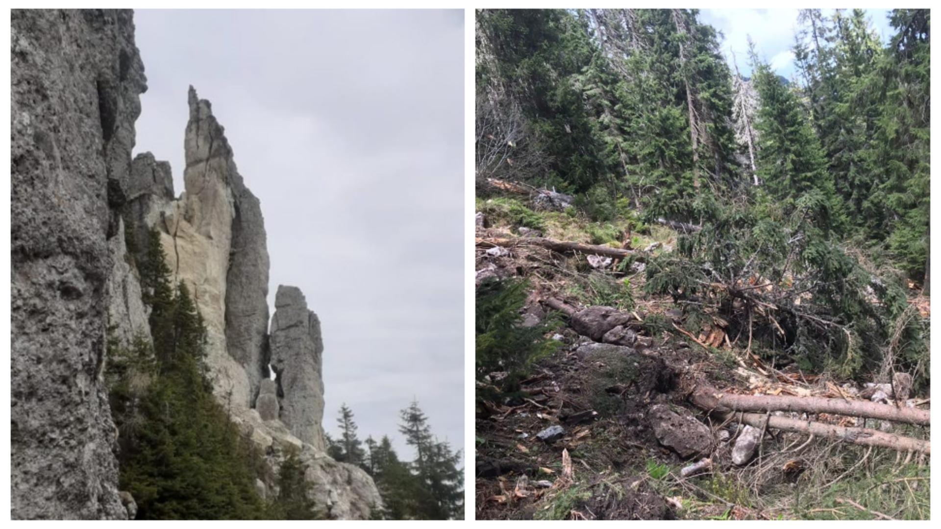 Turnul Ocolașul Mare, înainte și după (foto: vestea.net)