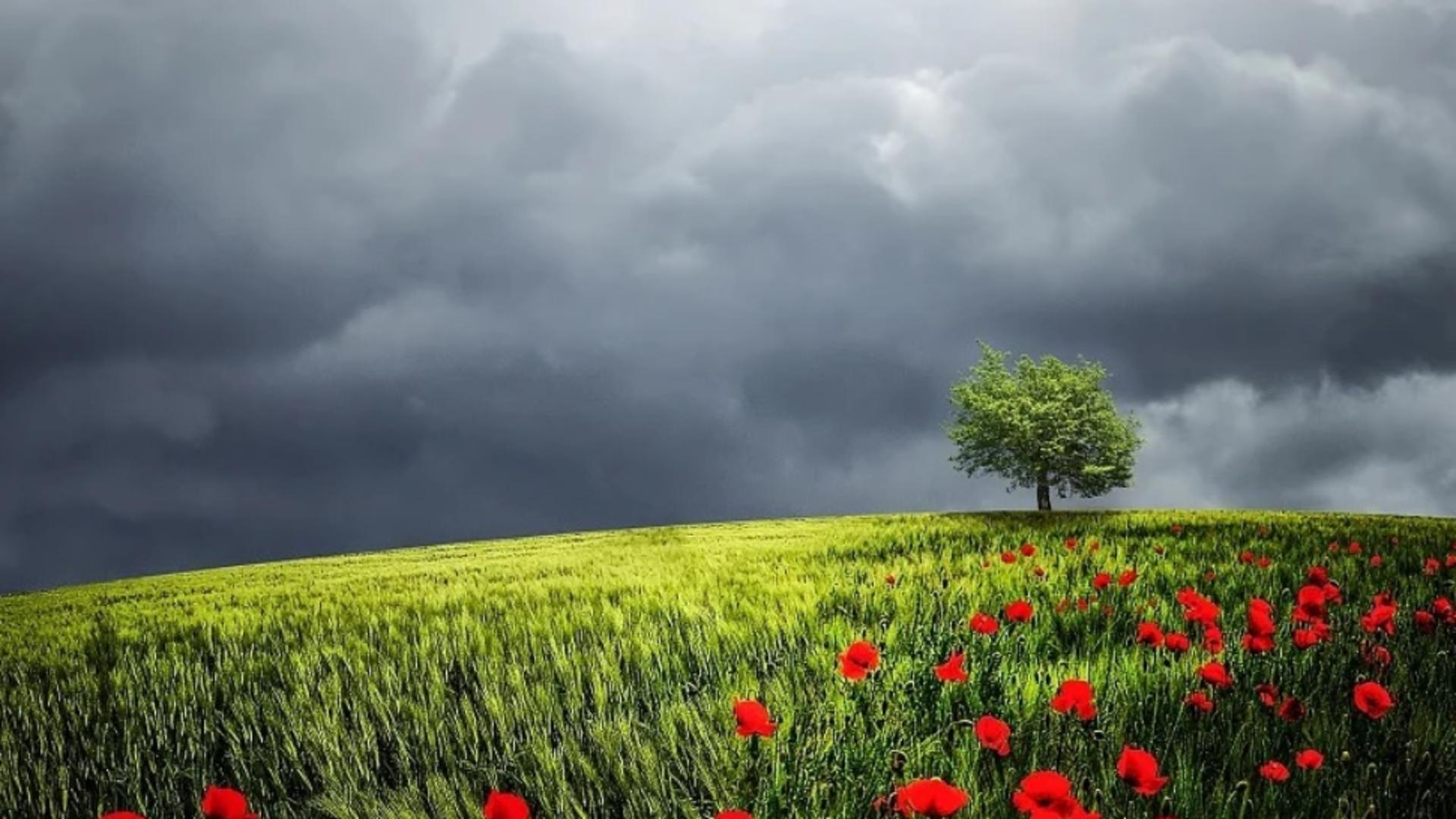 Prognoza meteo 18 iunie