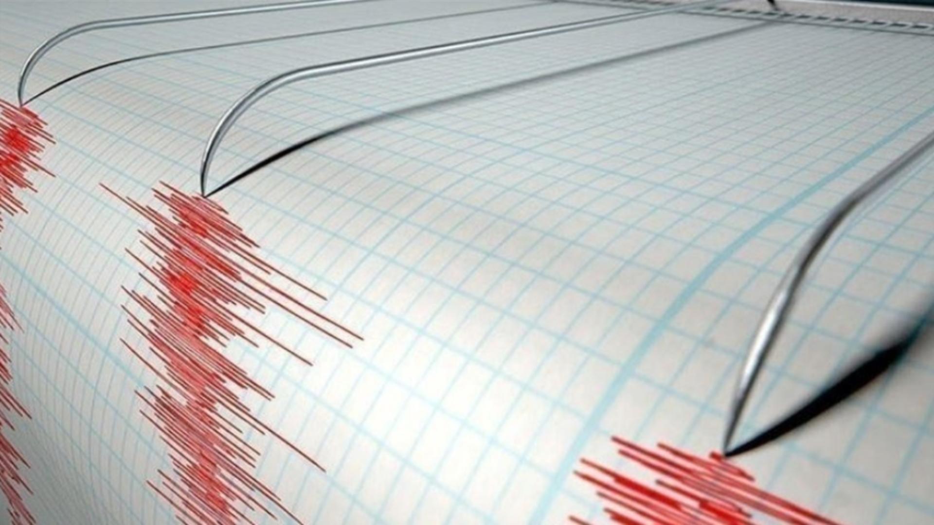 Cutremur, vineri după-amiază, în România