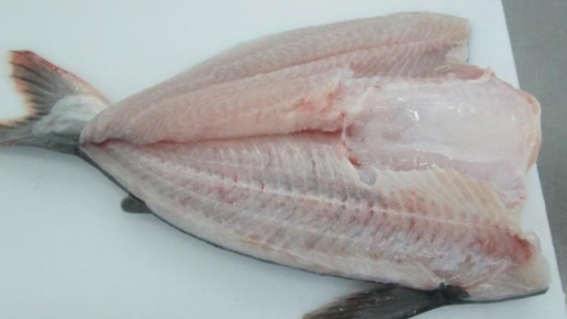 Pangasius, unul dintre cei mai toxici pești de pe piață