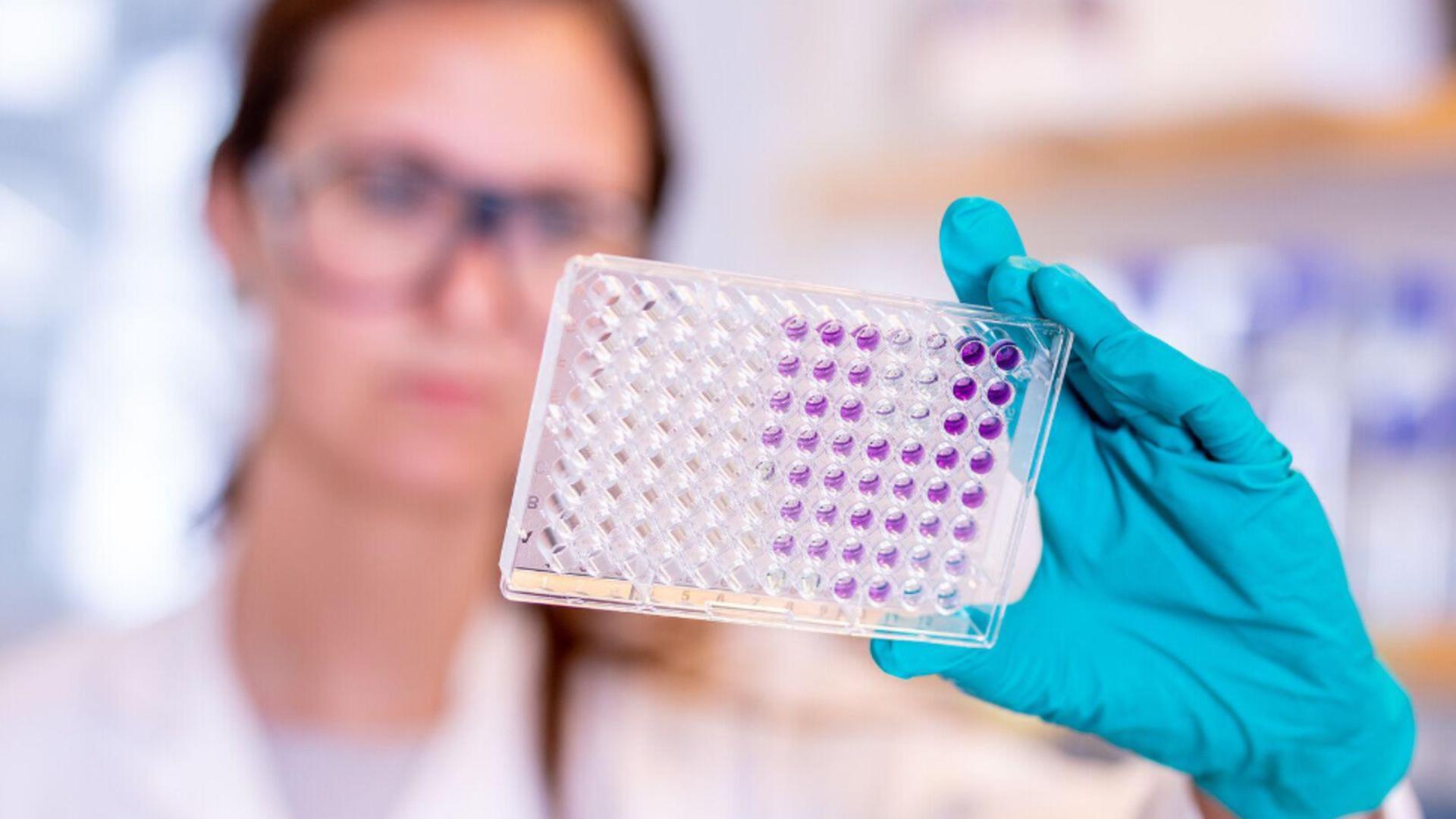 Valul 4 al pandemiei – generat de tulpina indiană Delta – va fi mult mai agresiv  / Foto: Profi Media