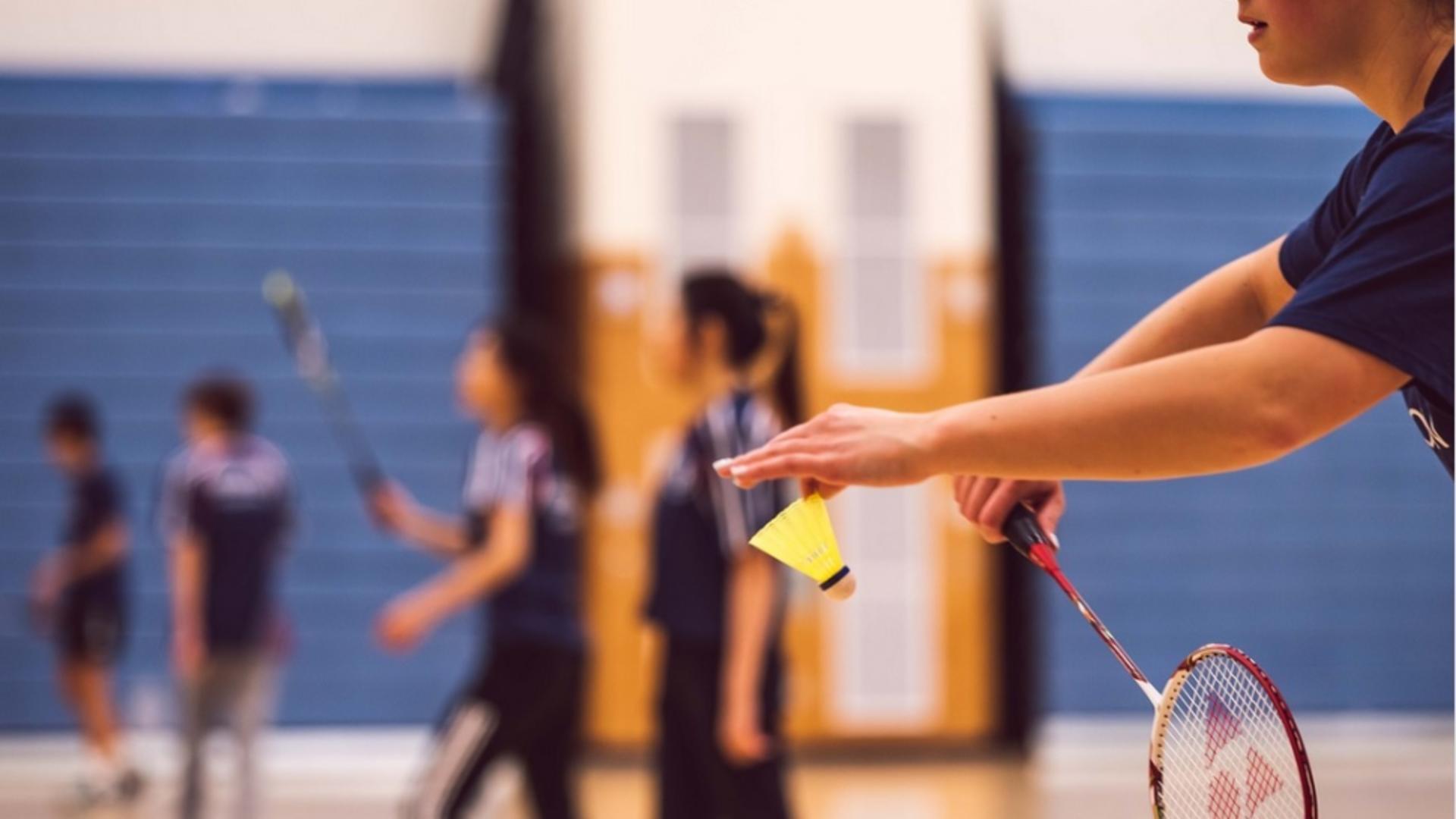 vederea și badmintonul)