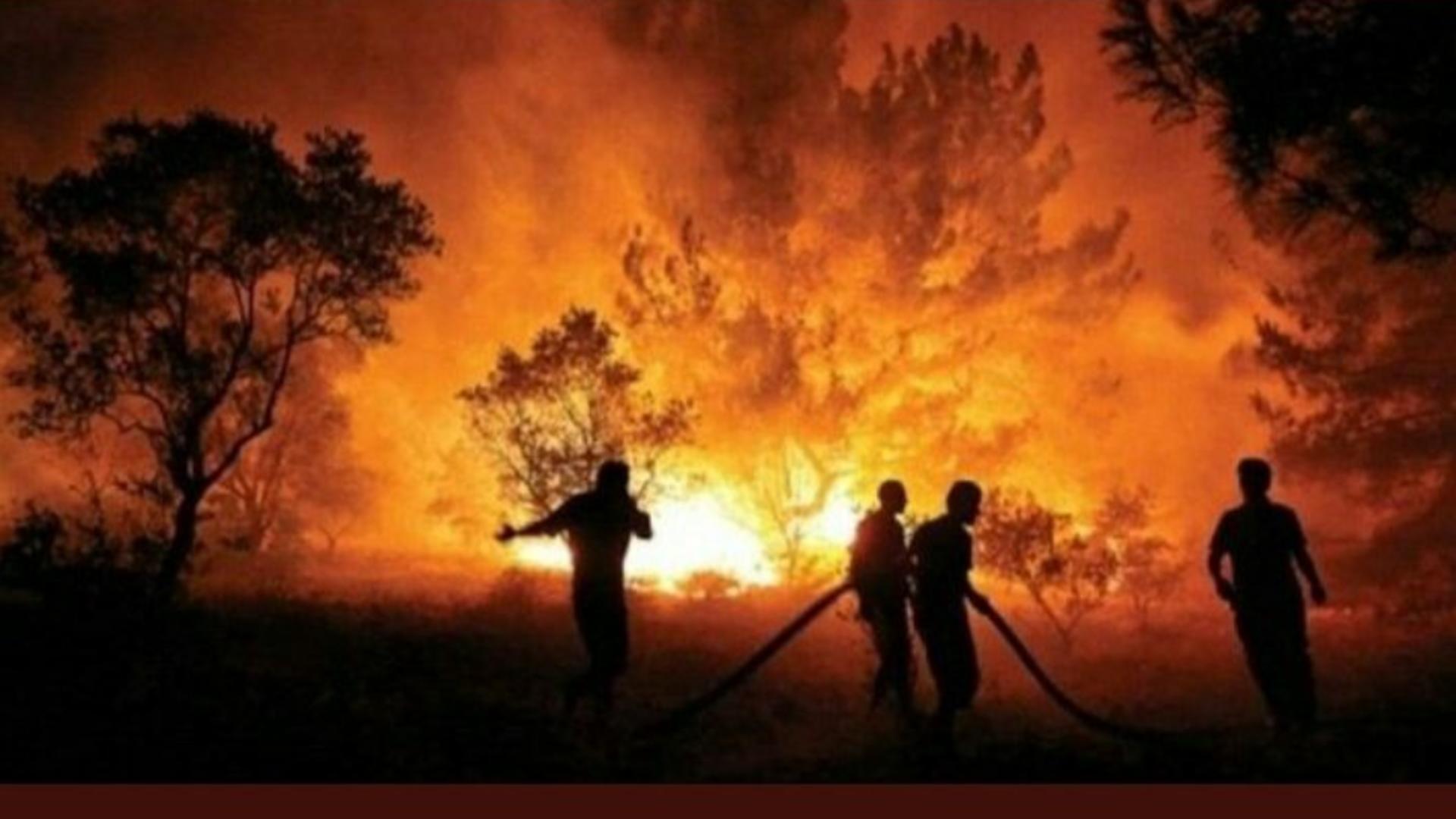 TRAGEDIE fără margini în Turcia! Numărul VICTIMELOR, în creștere, după incendiile uriașe Foto: Twitter