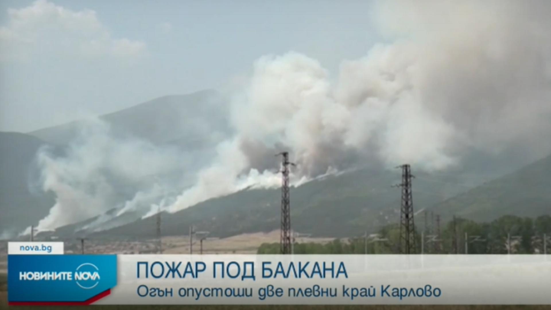 Incendii forestiere Bulgaria / Captură foto