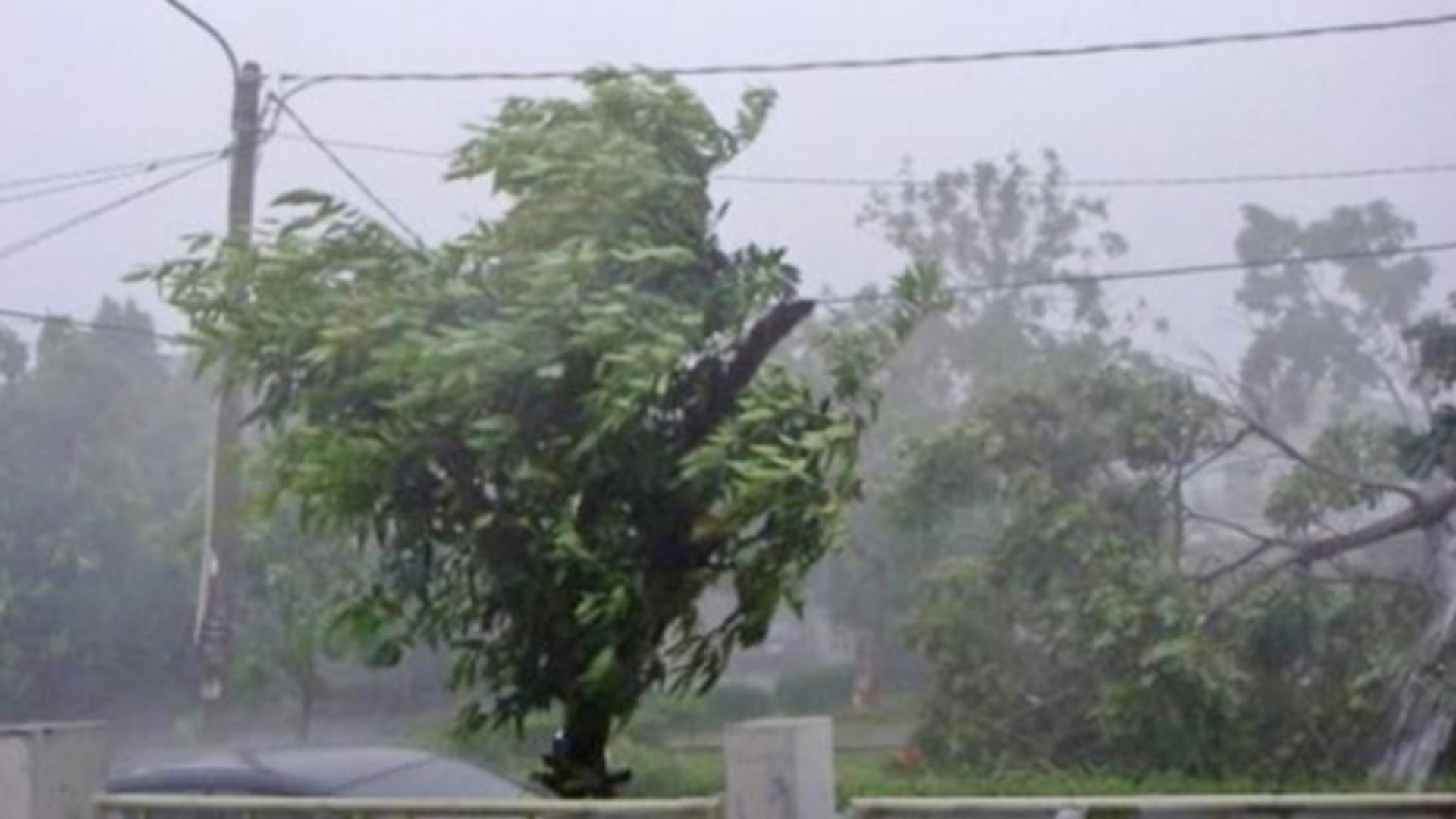 Furtuni Spania