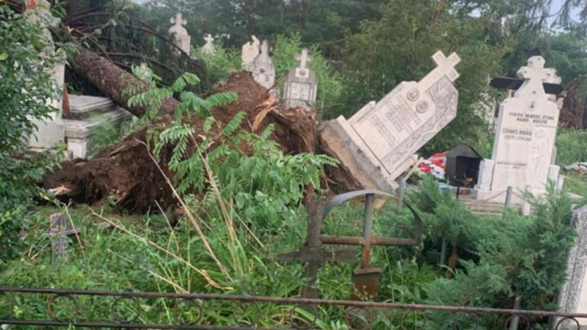 Monumente funerare - scoase din pământ