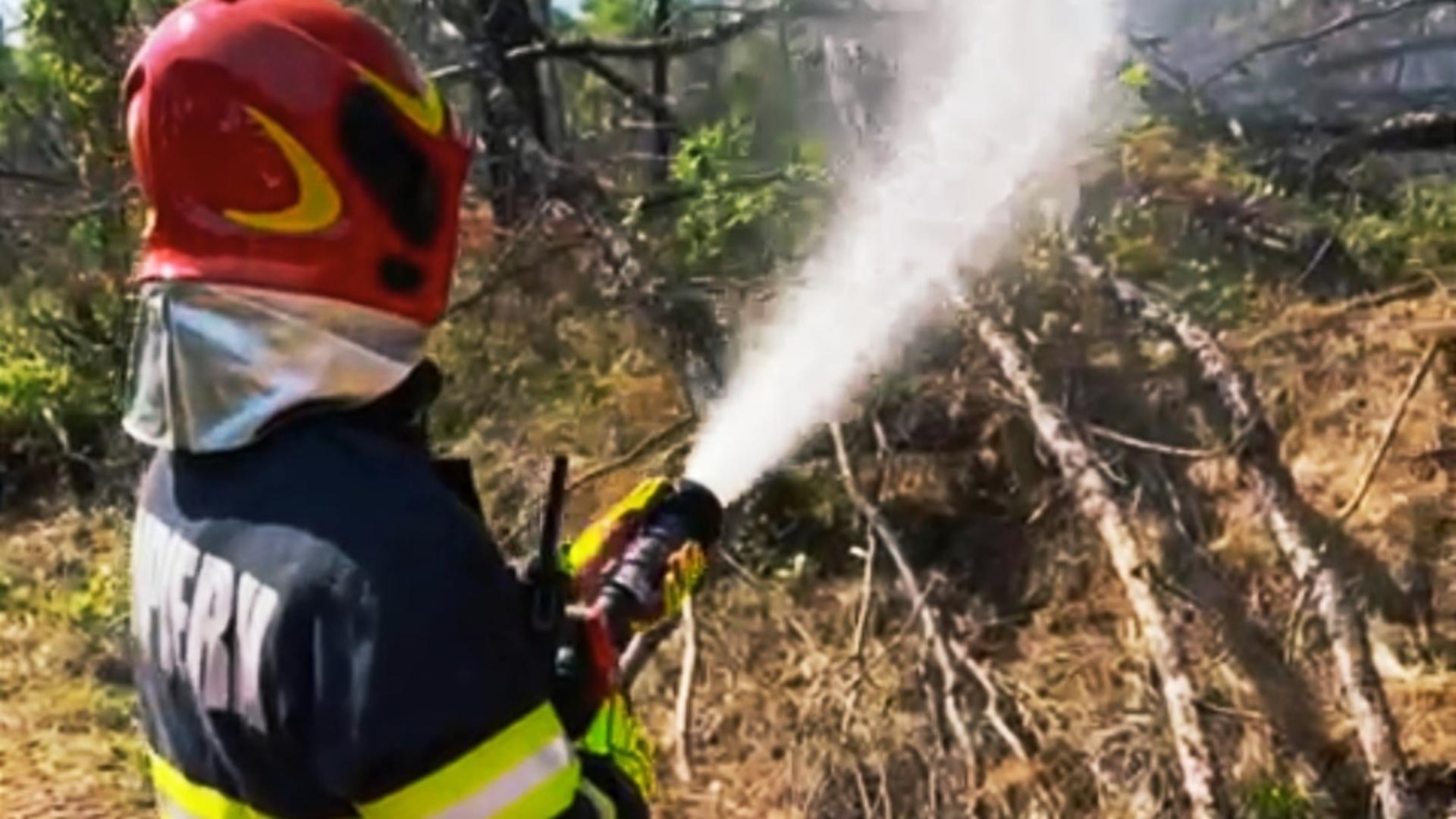 Incendiu vegetație Grecia - imagine de arhivă