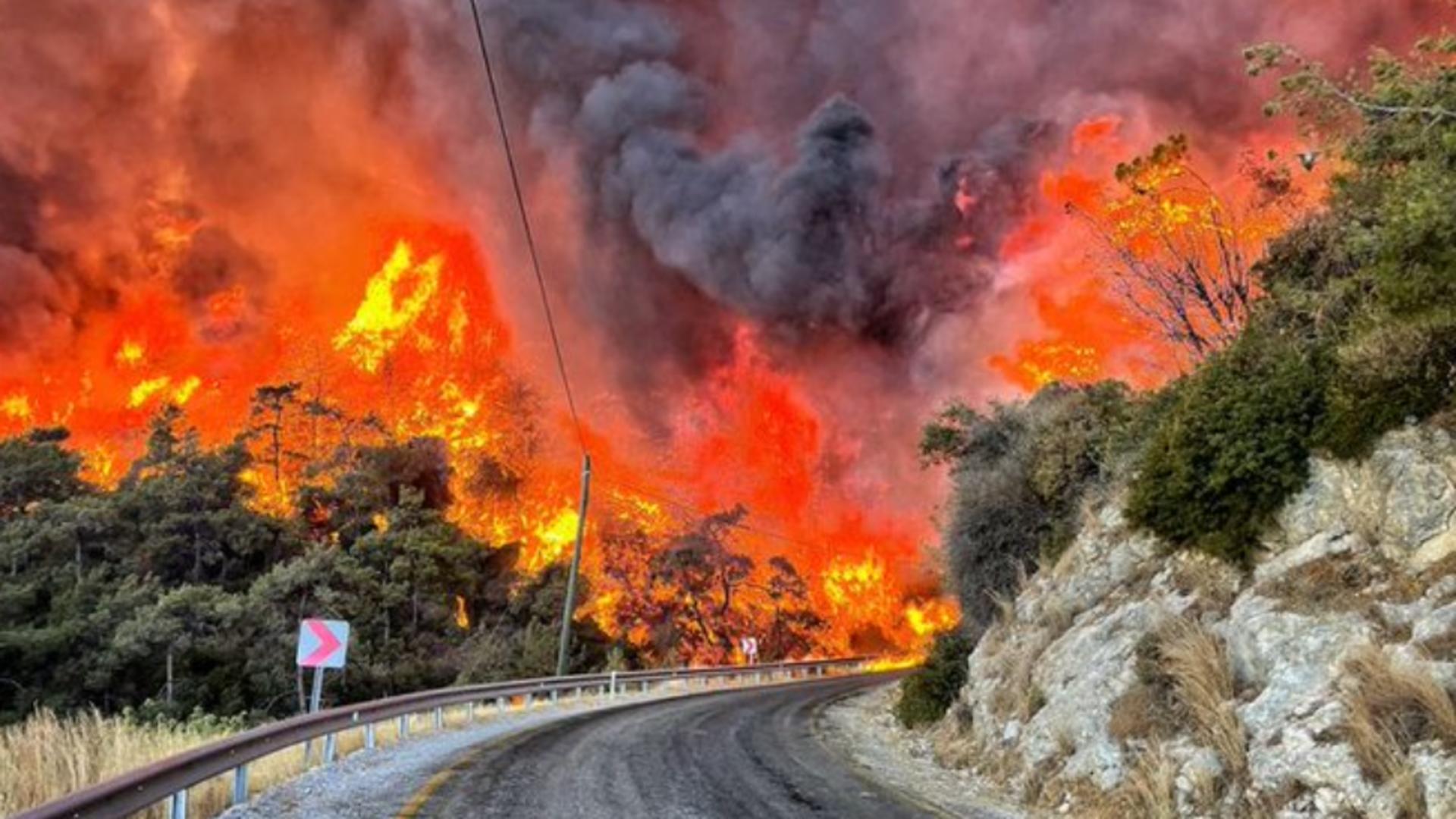 Incendii DEVASTATOARE în Europa din cauza caniculei - Zeci de morți și sute de răniți Foto: Twitter