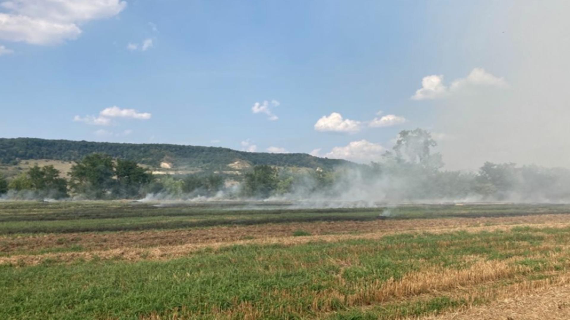 Incendiu vegetație Mureș