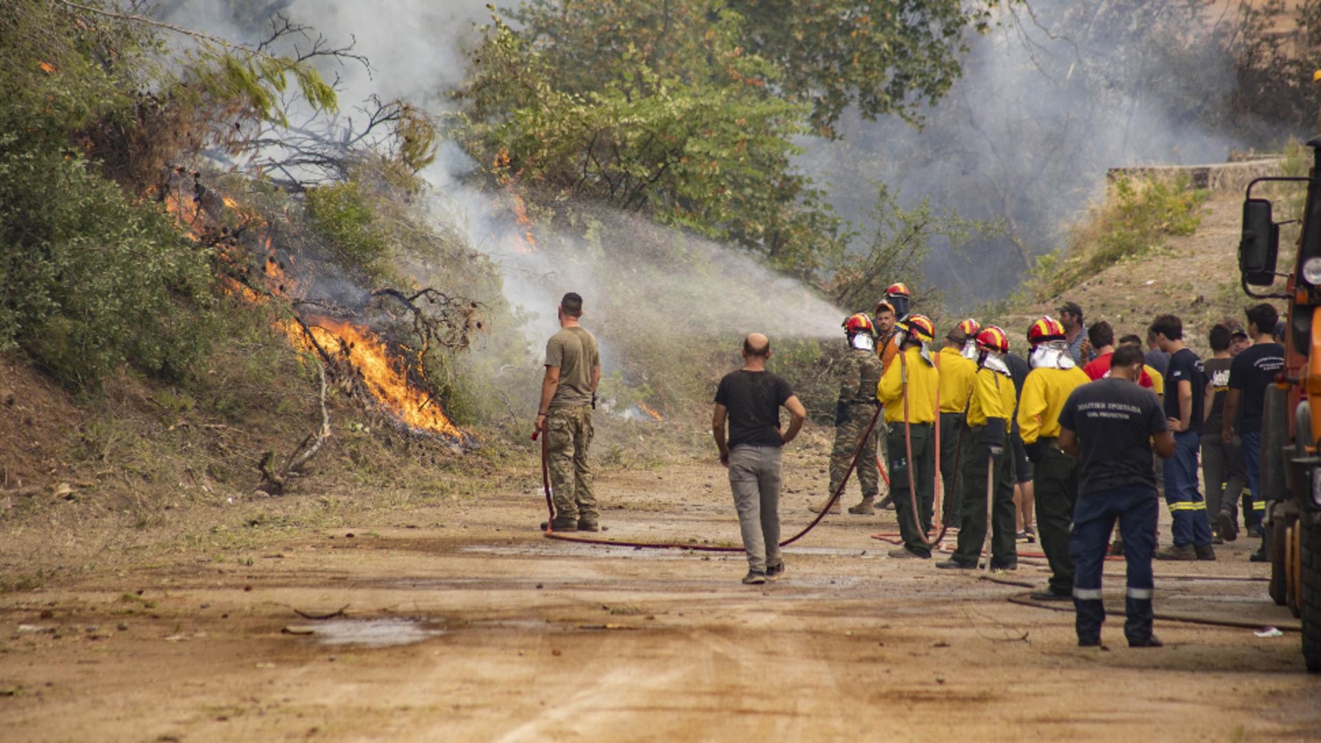 Grecia se confruntă de peste o lună cu incendii devastatoare. Foto/Profimedia