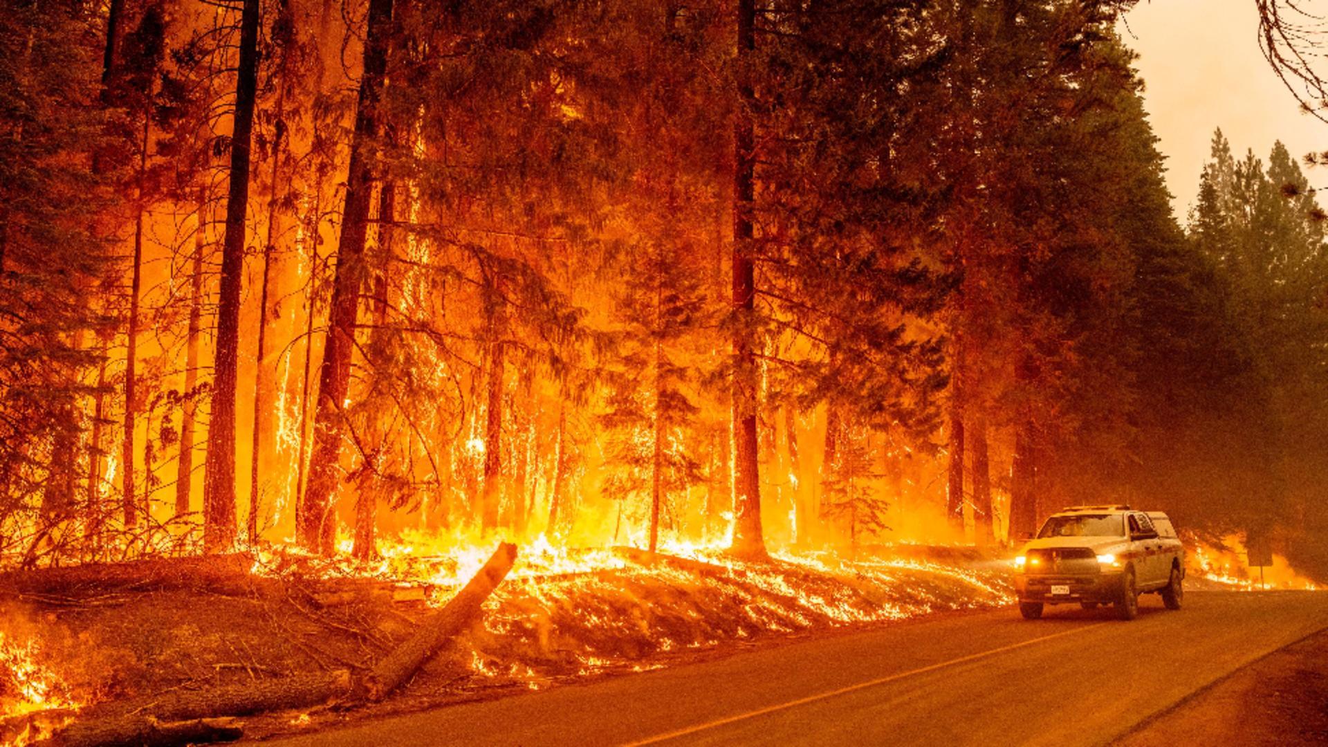 Flăcările au devenit ameninţătoare, în ciuda ameliorării condiţiilor meteorologice / Foto: Profi Media