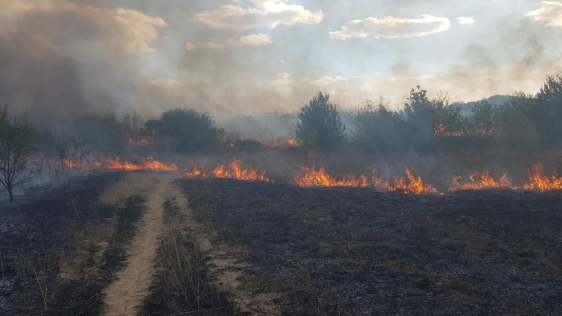 Incendiu de vegetație Craiova