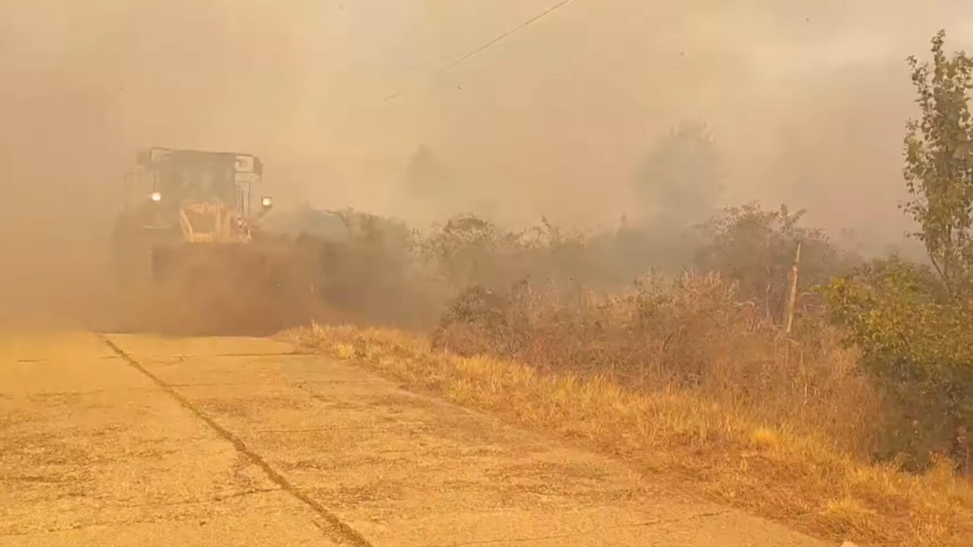 Incendiu vegetație Mehedinți / Captură foto