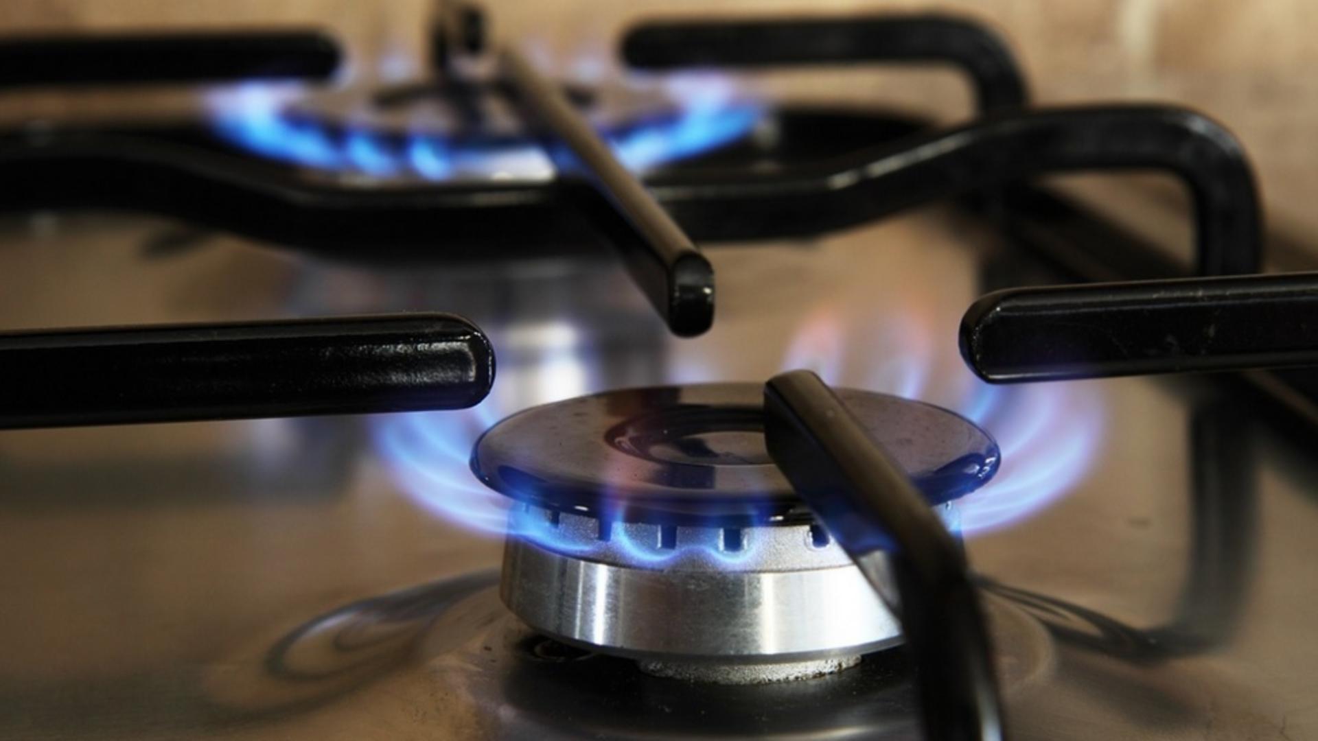 Olguța Vasilescu: Plafonarea prețurilor la energie și gaze, urgentă