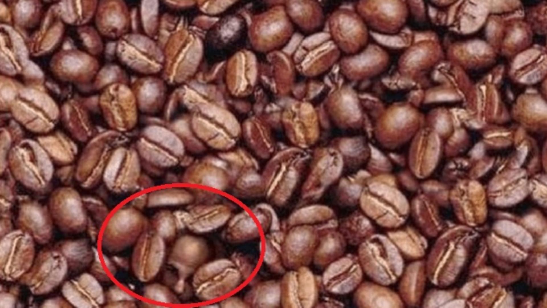 Dacă găsești chipul unui bărbat în această imagine în 3 secunde, ai un IQ peste medie