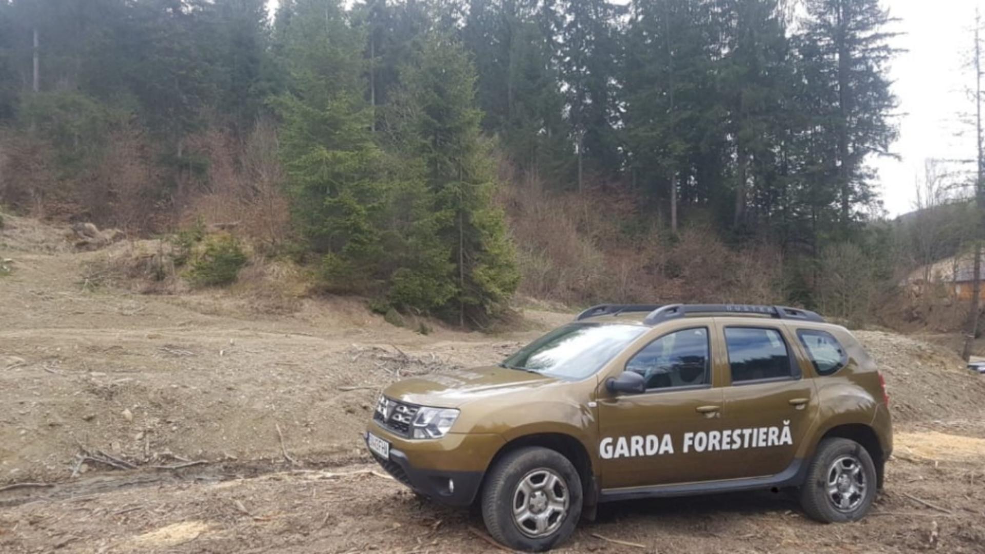 Masina Gărzii Forestiere Suceava