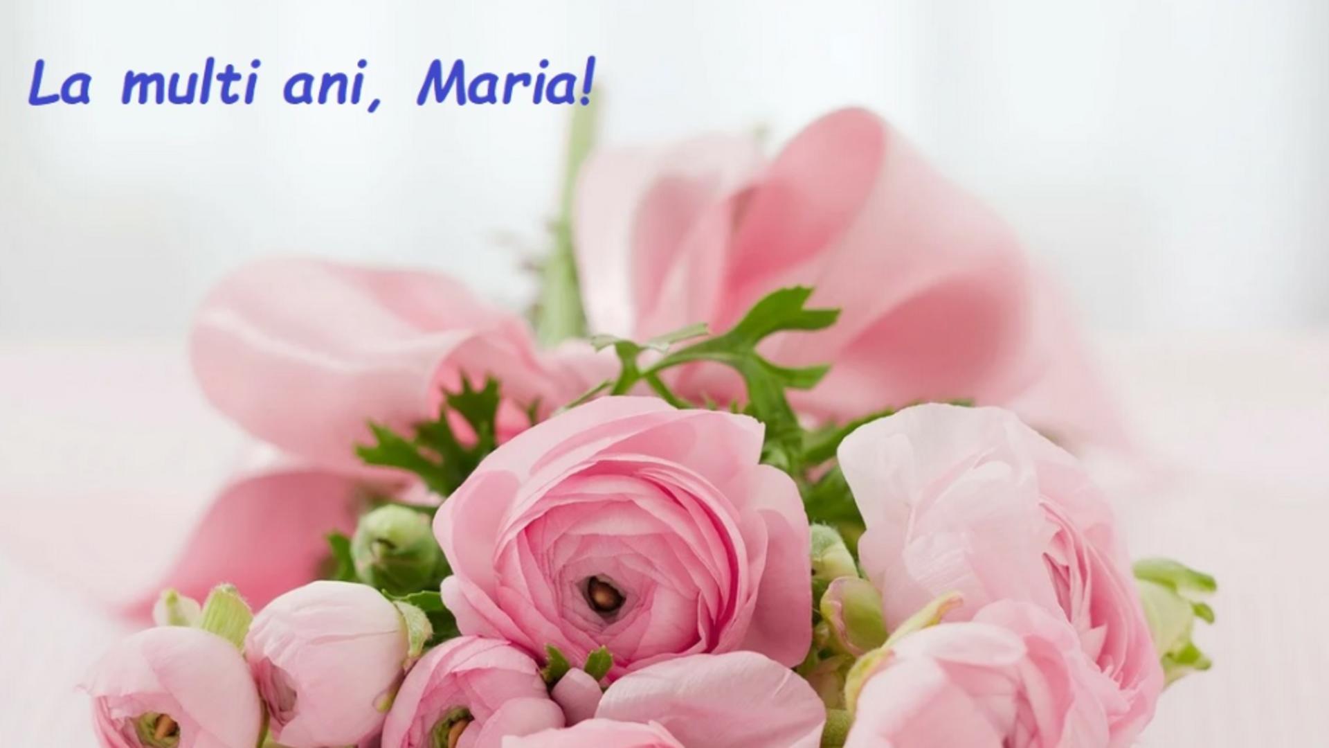 Sfanta Maria - Nașterea Maicii Domnului