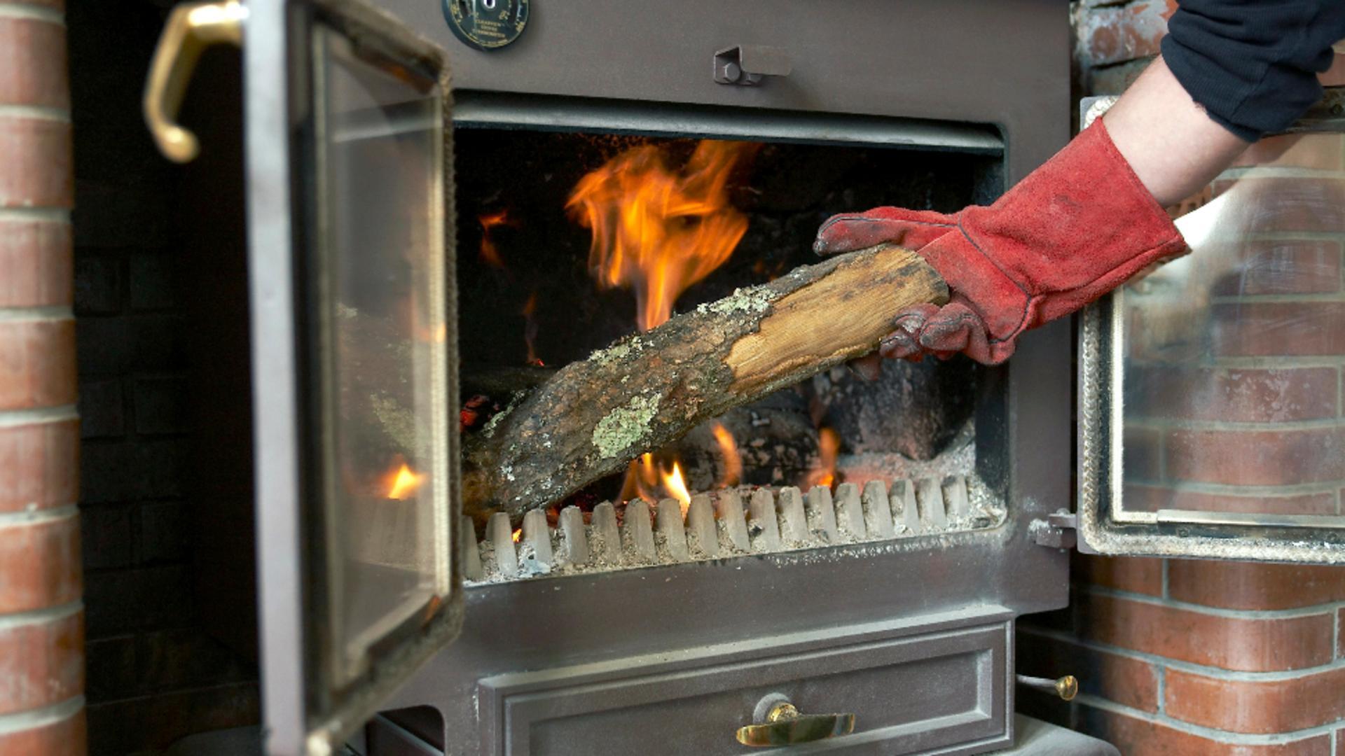TVA de 5% pentru lemnele de foc. Foto/Profimedia