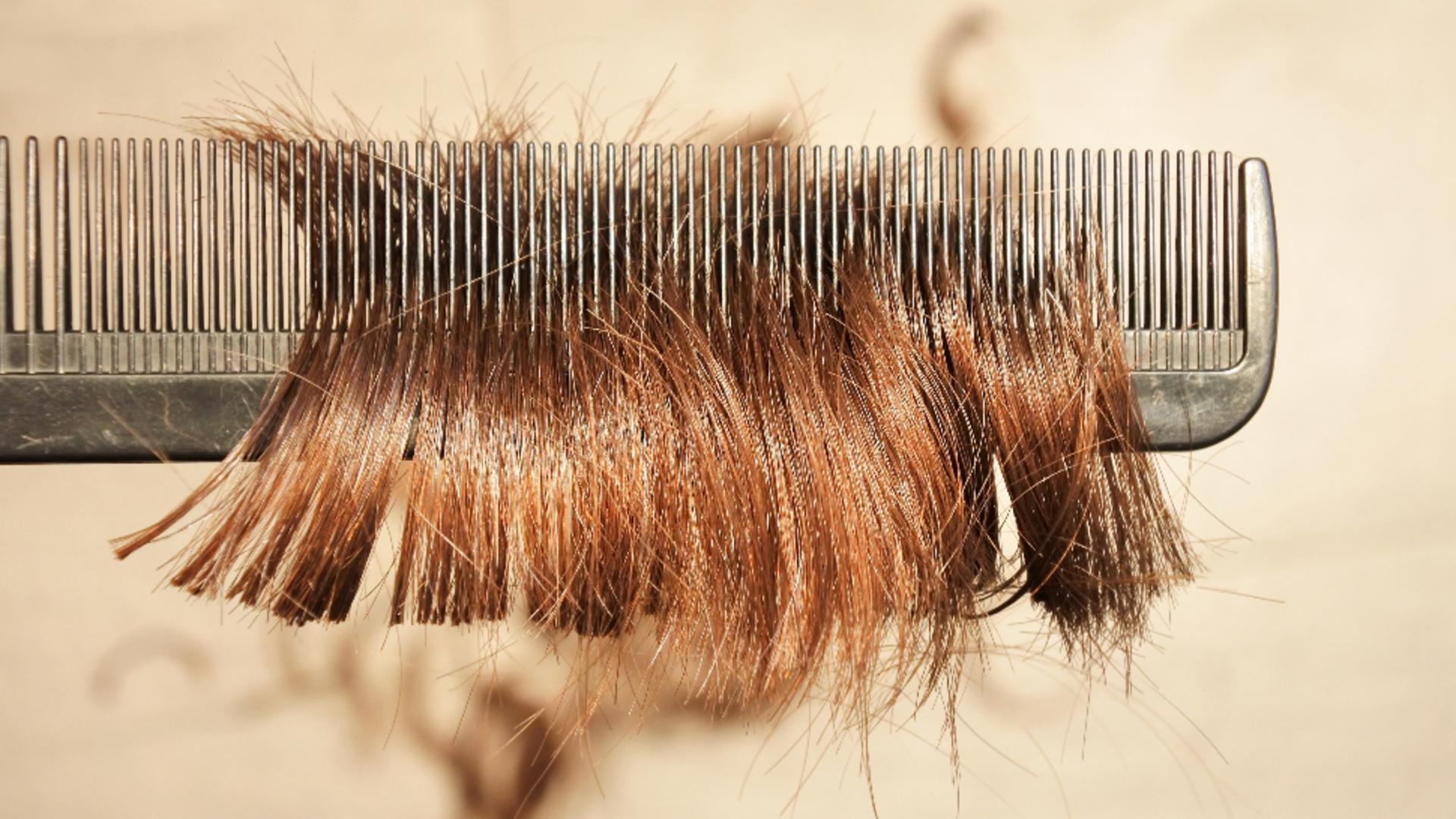 O fetiță s-a întors de la școală cu părul tuns de o profesoară. FOTO: Profi Media