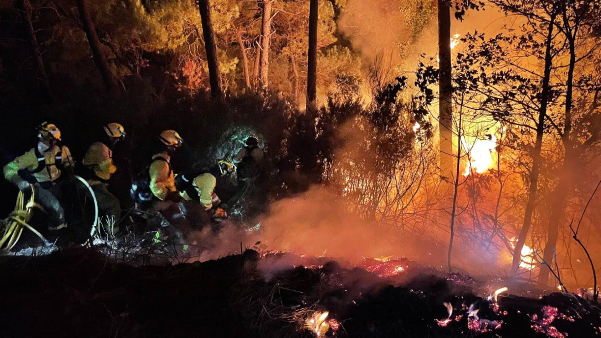 Incendiile de vegetație au devastat sudul Spaniei