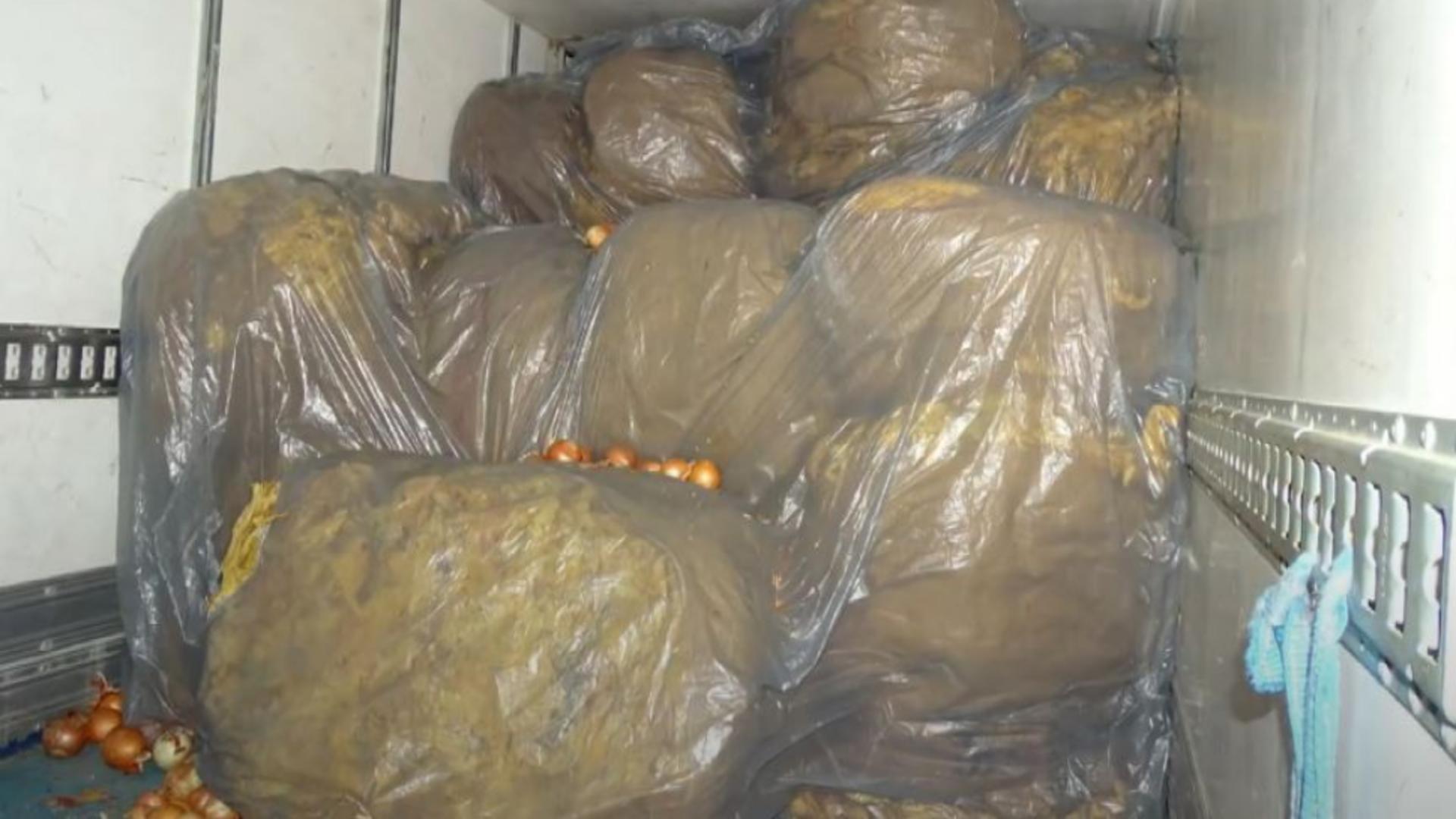 Tutun ascuns într-un transport de ceapă. Foto/Poliția
