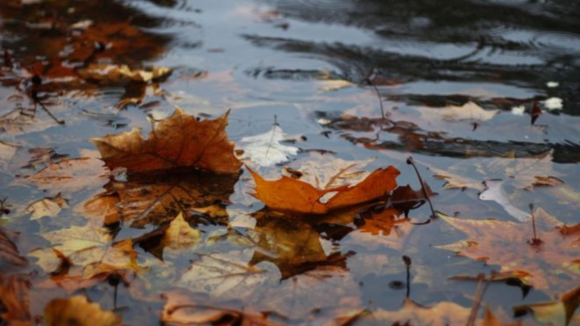 Vremea 9 octombrie - Frig și ploi în România